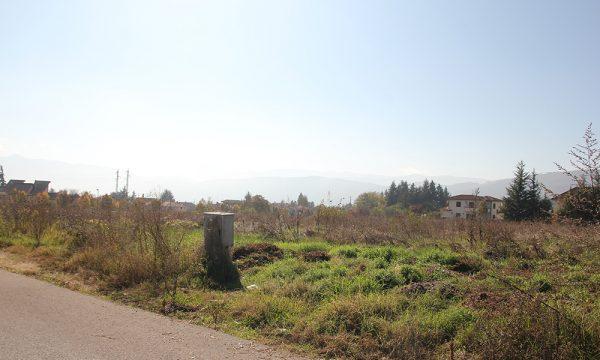 La liquidazione dei terreni demaniali in Terra di Lavoro Piedimonte Matese (ebook)